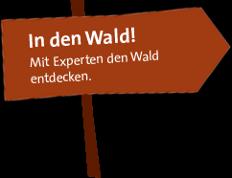 Waldexperten.jpg